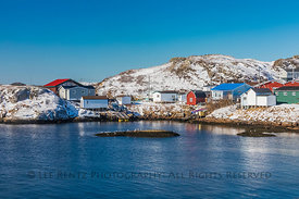 Ferry Passing Colorful Houses at Burgeo, Newfoundland