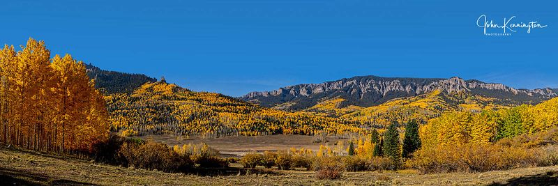 Silver Jack Aspens (Panoramic), Uncompahgre National Forest, Colorado