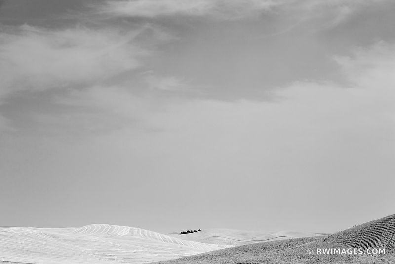 HILLS PALOUSE WASHINGTON BLACK AND WHITE LANDSCAPE