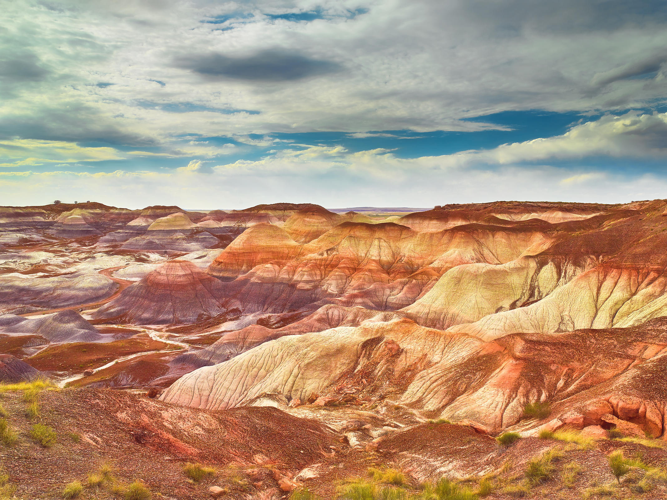 Blue Mesa Badlands
