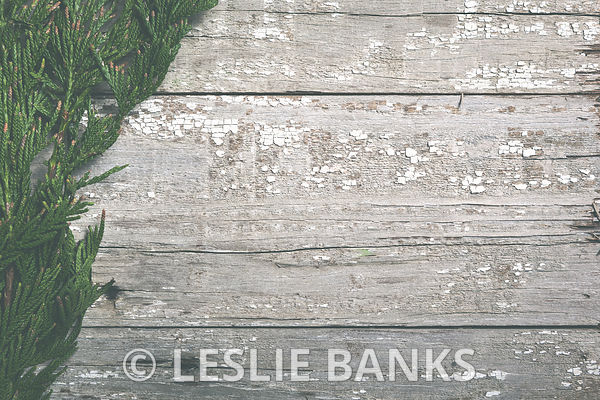 Greenery on Rustic Wood Background