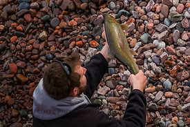 Large Trout Caught in Minnesota's Tettegouche State Park