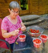 Woman Processing Strawberries