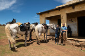 Horse riders taking a break at a local bar, Lesotho