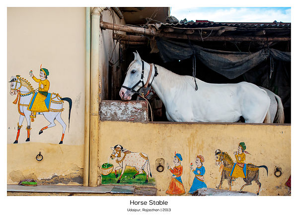 Horse Stable, Udaipur