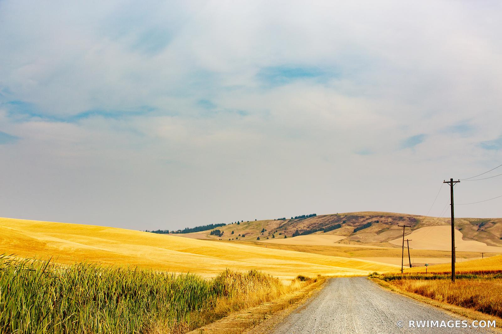 COUNTRY ROAD PALOUSE REGION EASTERN WASHINGTON STATE LANDSCAPE