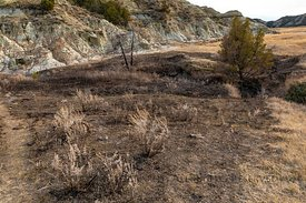 Coal Seam Fire In Theodore Roosevelt National Park