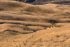 Folds in the Earth along Dalles Mountain Road