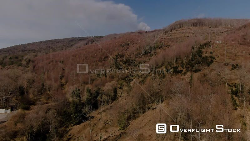 Lava Rock, Trees and Shrubs Revealing Mount Etna in Sicily