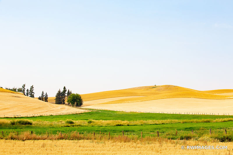 PALOUSE REGION RURAL EASTERN WASHINGTON STATE LANDSCAPE