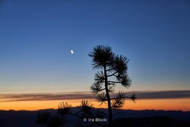 Moon rise and a night view at Bryce Canyon National Park, Utah