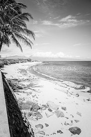 Maui Hookipa Beach Paia Hawaii Black and White Photo
