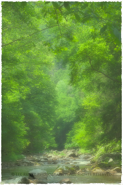 SMOKY_MOUNTAIN_STREAM