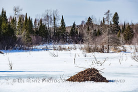 Beaver Lodge along Minnesota's North Shore
