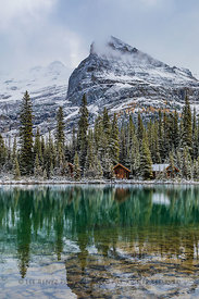Lake O'Hara Lodge Cabins in Yoho National Park