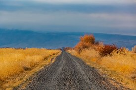 Road in Malheur Wildlife Refuge