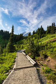 Trail in Paradise at Mount Rainier