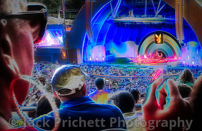 Hollywood Bowl audience, #1