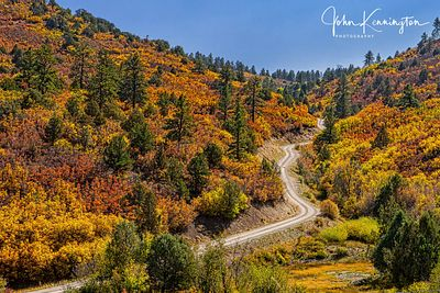 Autumn Road, Ridgway, Colorado