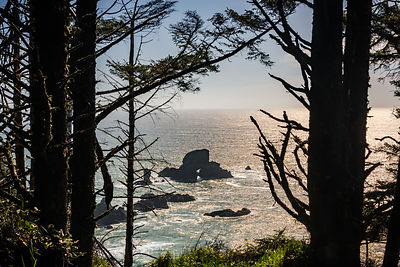 oregon_coast-50