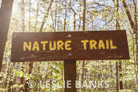 Nature Trail Sign on a Hiking Path