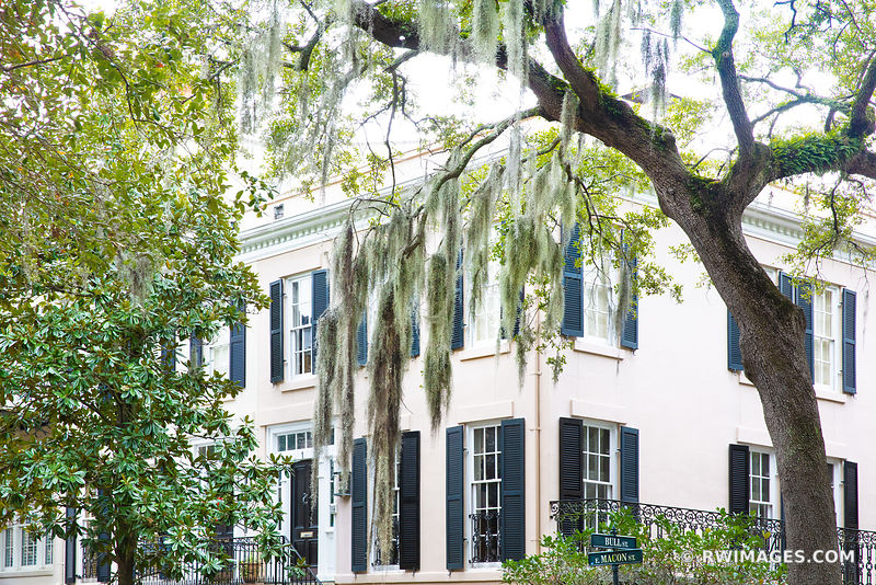 HISTORIC SAVANNAH ARCHITECTURE SPANISH MOSS LIVE OAK TREES SAVANNAH GEORGIA