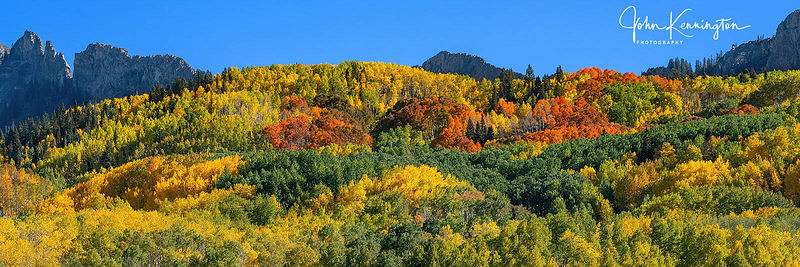 Gunnison National Forest Color Panoramic, Colorado