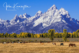 Grand Pasture, Grand Teton National Park, Wyoming