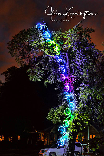 Bicycle Light Tree, The Paseo District, Route 66, Oklahoma City