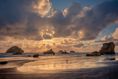 oregon_coast-225