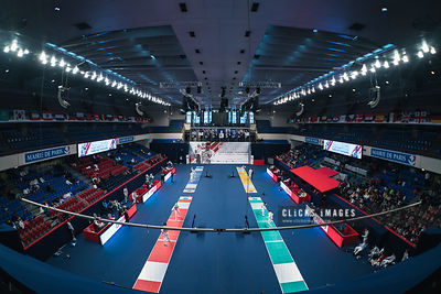 Paris Fencing World Cup 2020