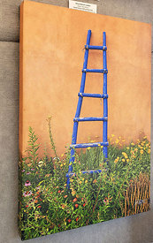 Canvas_Gallery_Wrap_(Ghost_Ranch_Ladder_16x24)