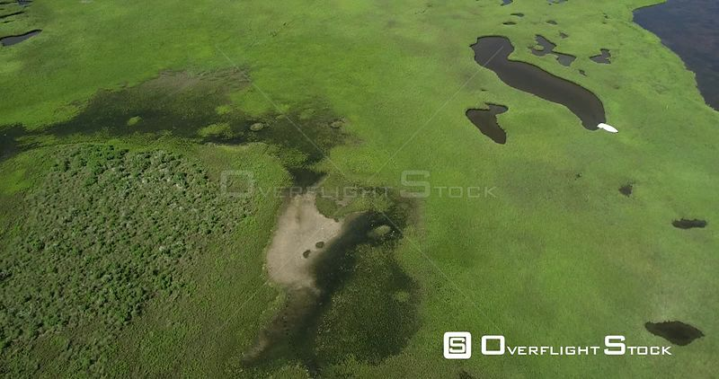 Flying over saltgrass in a tidal marsh at high tide, Galveston Island, Texas