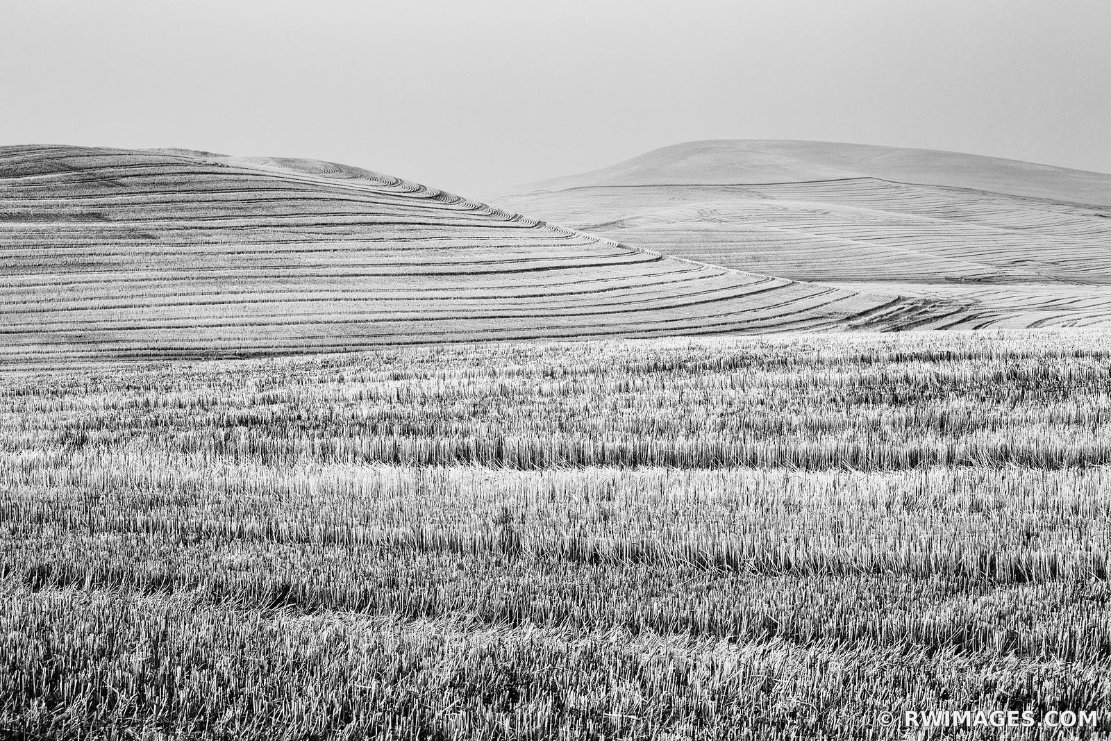 WHEAT FIELD AFTER SUMMER HARVEST PALOUSE WASHINGTON BLACK AND WHITE LANDSCAPE