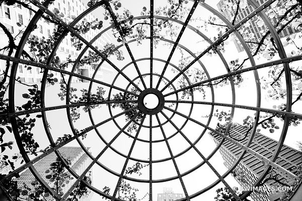 LATTICE CUPOLA POST OFFICE SQUARE BOSTON BLACK AND WHITE