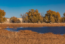 Benson Pond in Malheur National Wildlife Refuge