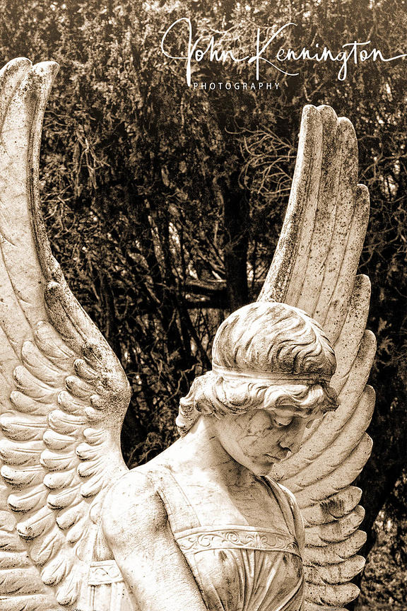 Evergreen Cemetery Angel, Victoria, Texas