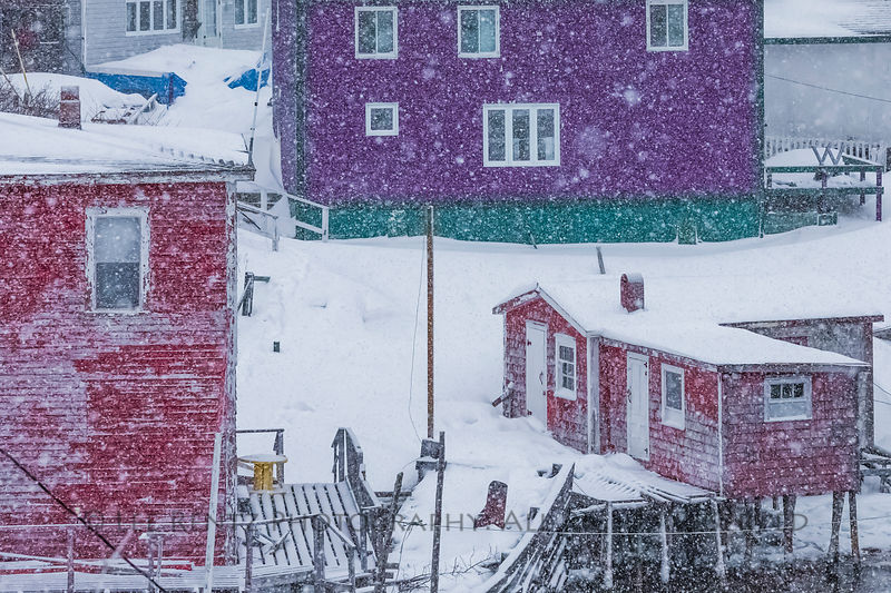 Fishing stage and colorful homes in Francois during a snowstorm