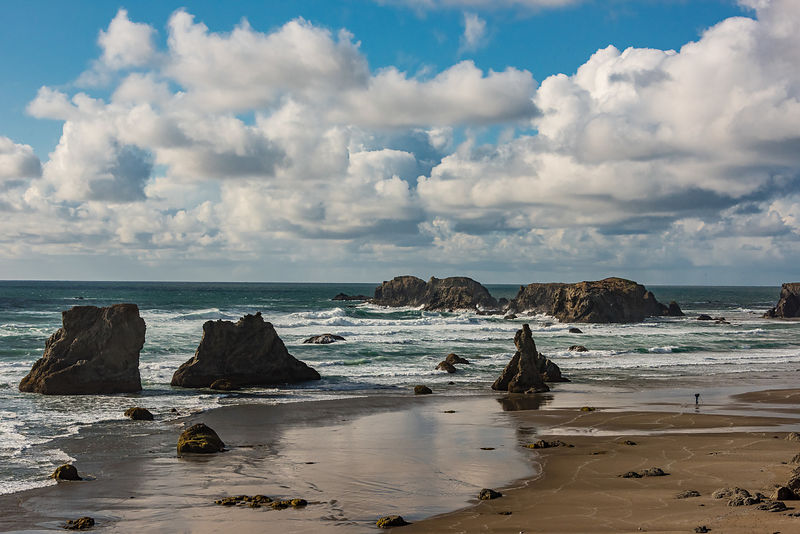 oregon_coast-206