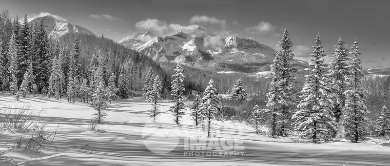 Winter Perfection, Wilson Peak - Large Print Option