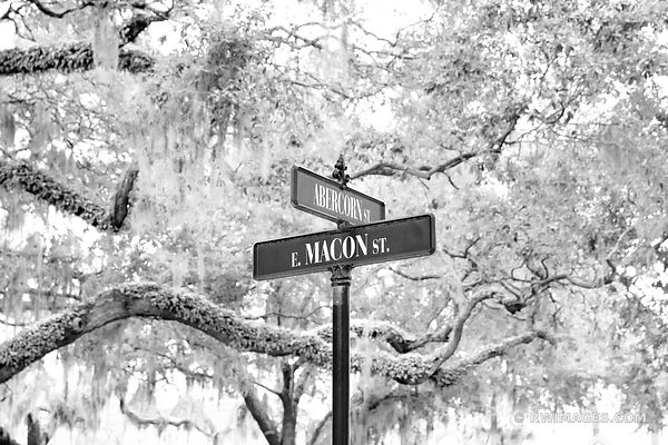 ABERCORN STREET AND MACON STREEET SIGN HISTORIC SAVANNAH GEORGIA BLACK AND WHITE
