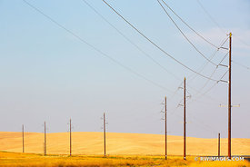 POWER LINES PALOUSE REGION EASTERN WASHINGTON STATE LANDSCAPE