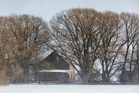 Barn among Trees in Michigan's Upper Peninsula