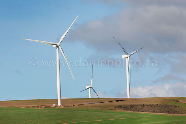 Wind turbines in a fiield in South Africa