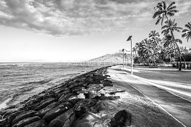 Maui Kalama Park Kihei Hawaii Black and White Photo