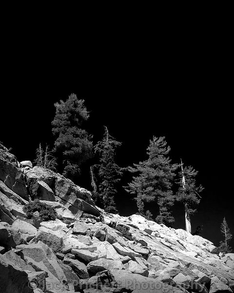 Granite & Pines (black and white version)