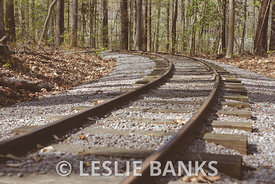 Railroad Tracks at a Park