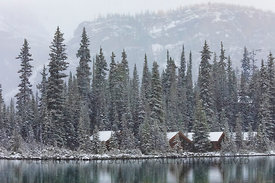 Cabins of Lake O'Hara Lodge in Yoho National Park