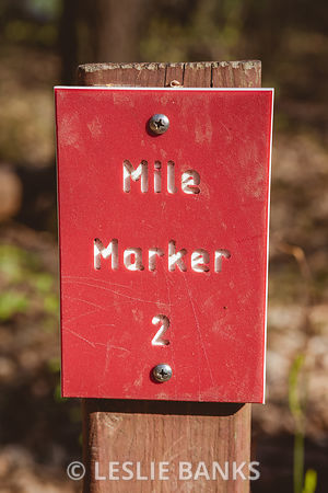 Mile Marker on a Hiking Trail