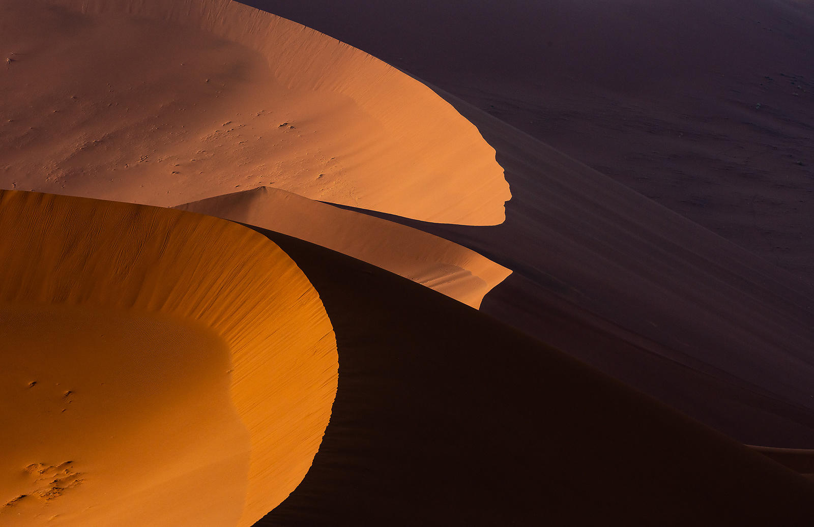 Namib Dune Abstract 472